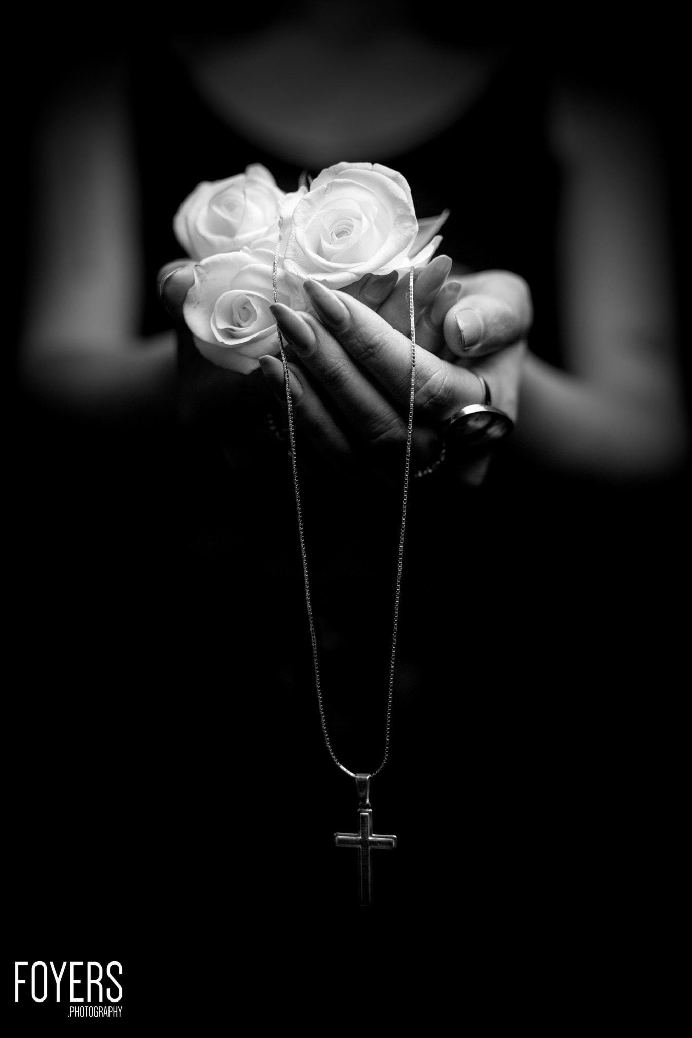 White rose in hands-2550-dogwood52 - copyright Robert Foyers