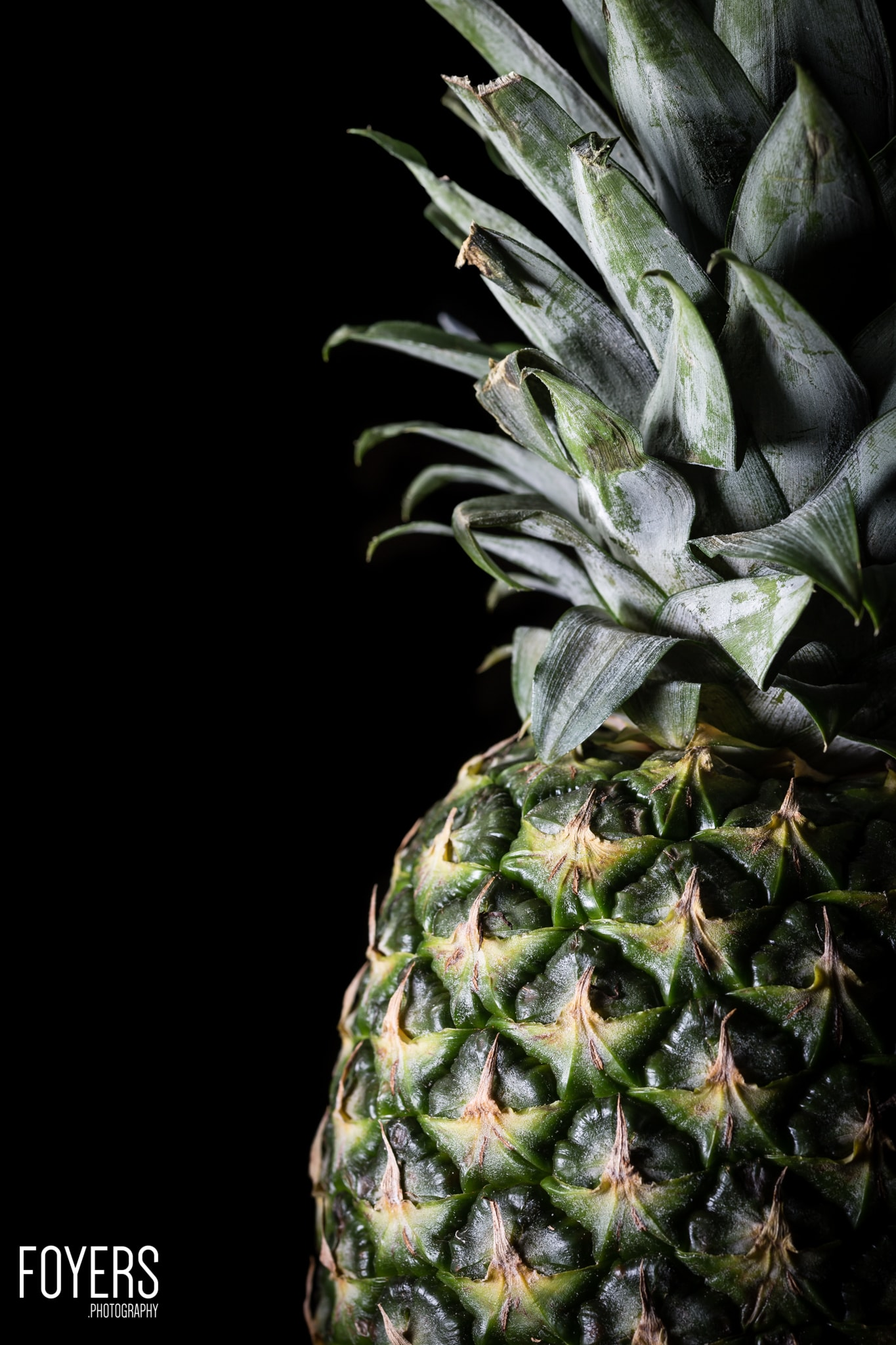 pineapple-9302-Edit-2