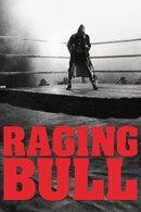 Poster of Raging Bull