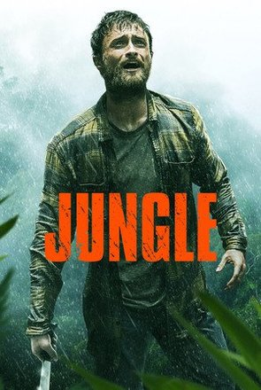 Picture of Jungle