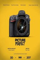 Poster of Picture Perfect