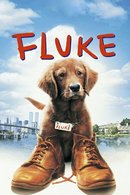 Poster of Fluke