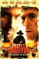 Poster of Bullfighter