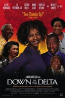 Poster of Down in the Delta