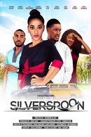 Poster of The Silver Spoon