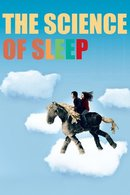 Poster of The Science of Sleep