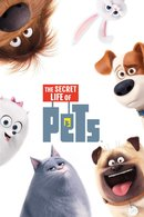 Poster of The Secret Life of Pets