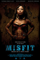 Poster of Misfit