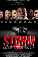 Poster of Storm