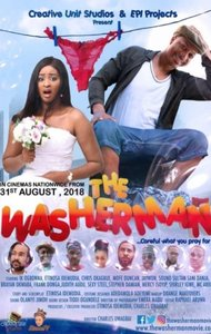 Poster of The Washerman