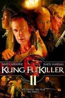 Poster of Kung Fu Killer 2