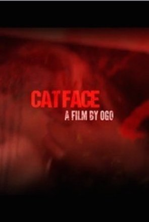 Picture of Cat Face