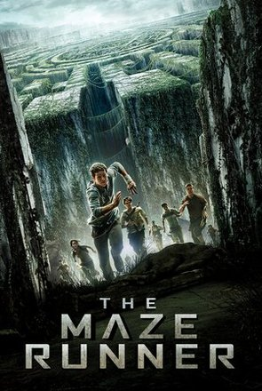 Picture of The Maze Runner