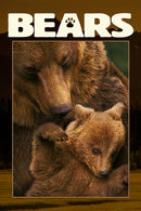 Poster of Bears