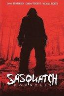Poster of Sasquatch Mountain