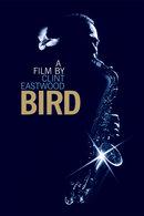 Poster of Bird
