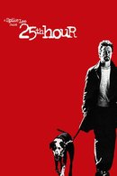 Poster of 25th Hour