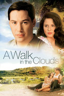 Poster of A Walk in the Clouds