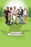 Poster of Strange Wilderness