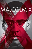 Poster of Malcolm X