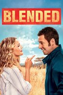 Poster of Blended
