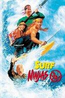 Poster of Surf Ninjas