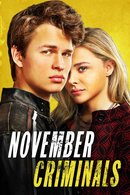 Poster of November Criminals