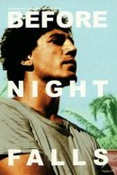 Poster of Before Night Falls