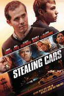 Poster of Stealing Cars