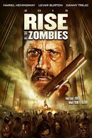 Poster of Rise of the Zombies