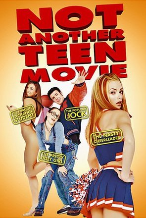 Picture of Not Another Teen Movie