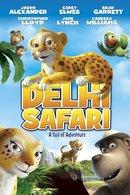 Poster of Delhi Safari