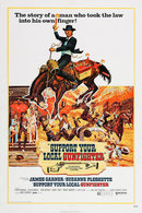 Poster of Support Your Local Gunfighter