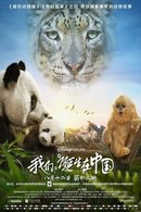 Poster of Born in China