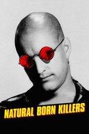 Poster of Natural Born Killers