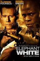 Poster of Elephant White
