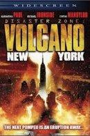 Poster of Disaster Zone: Volcano in New York