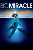 Poster of Big Miracle