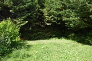 image 6 thumbnail