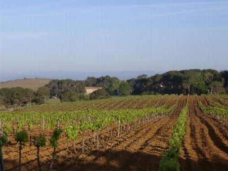 Beziers,Languedoc-Roussillon,34500,Other,10765-GAL10500000E