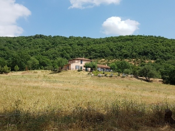 Renovated Home Temporarily Divided In 2 Accomodations On 23399 m2 With Pool In The Countryside