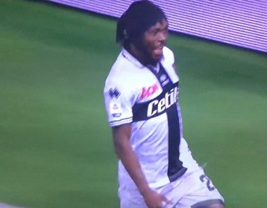 Gervinho In Parma Juventus 2018 19 2