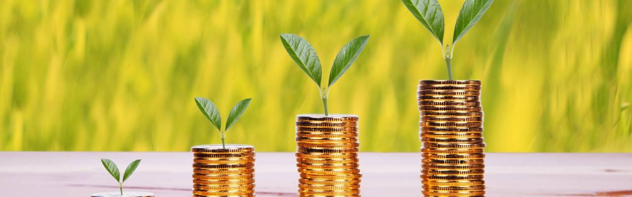 ESG - vastuullinen ja eettinen sijoitustoiminta | Finva
