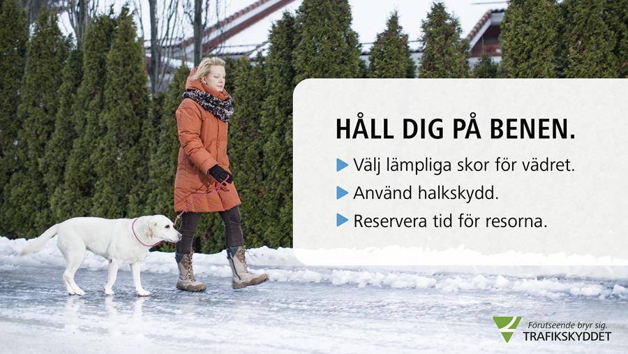 En kvinna med en hund under vinter. Text: Håll dig på benen: välj lämpliga skor för vädret- använd halkskydd- reservera tid för resorna.