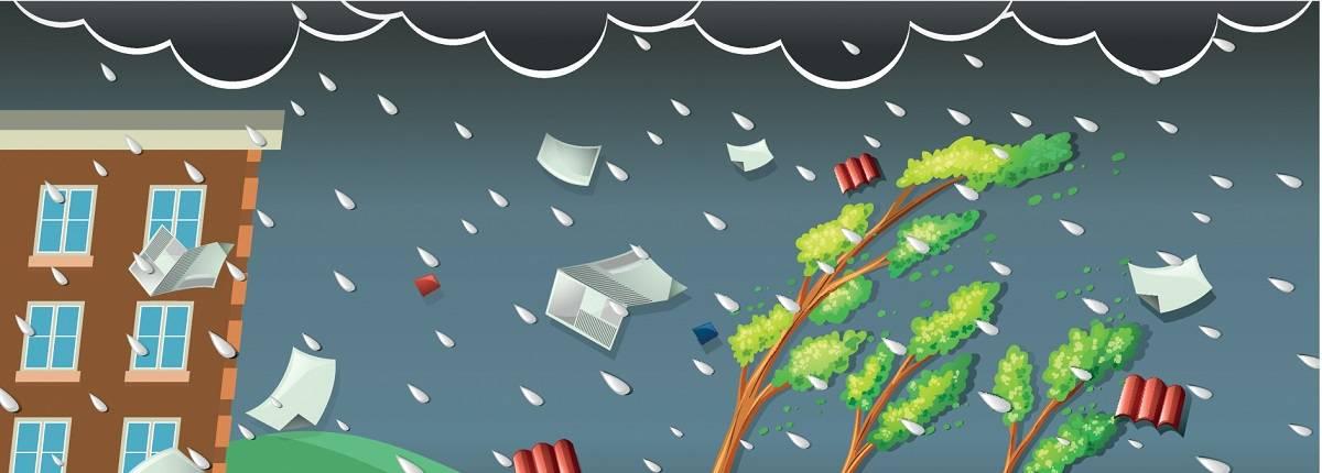28328484 storm scene with rain and wind 160920