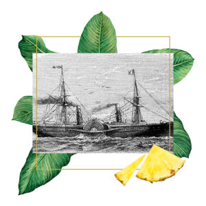 nave a vapore