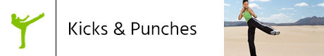 Kicks & Punches