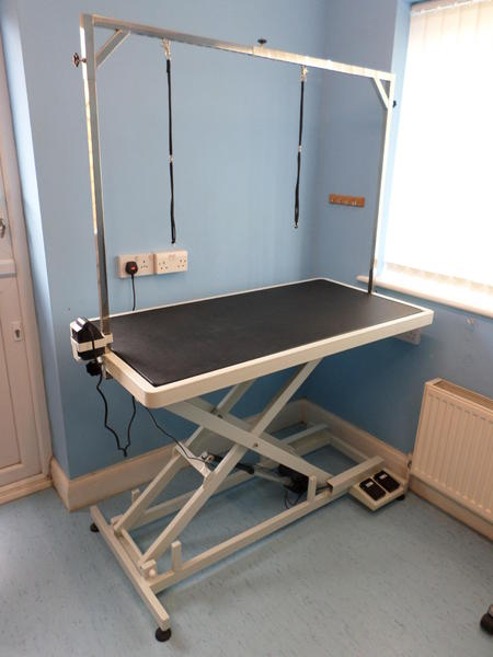 Excellent Aeolus Electric Low Low Dog Grooming Table In Steyning Interior Design Ideas Tzicisoteloinfo