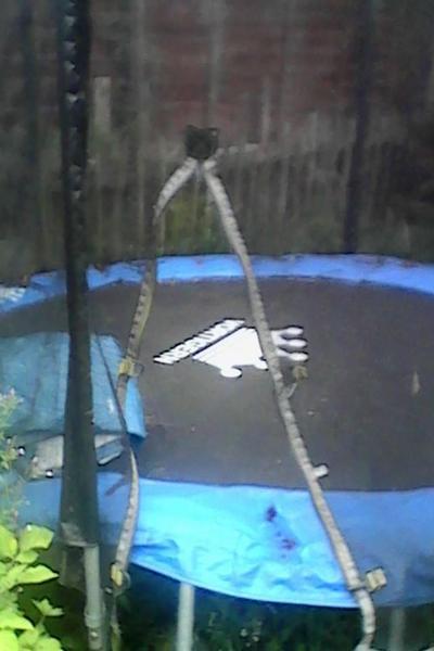 Sportspower 10ft Trampoline And Enclosure 8367 In Bellshill