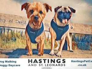 Hastings and St Leonards Dog Walking in Hastings & Pet Services in Tenterden | Friday-Ad